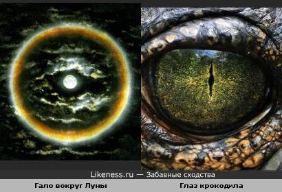 Гало вокруг Луны похоже на глаз крокодила