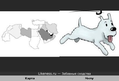 Карта нефтегазовых месторождений Магриба похожа на Милу