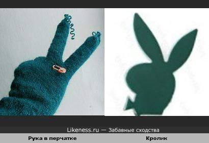 Рука в перчатке похожа на кролика