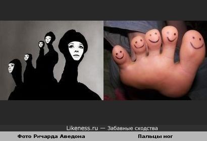 Композиция фото работы Ричарда Аведона похоже на пальцы
