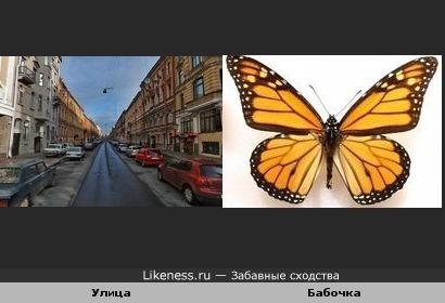 Улица похожа на бабочку