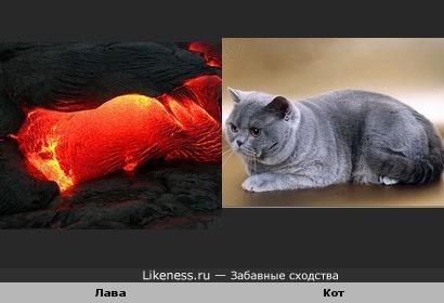 Лава похожа на кота