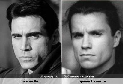 Эдриан Пол и Брюно Пельтье похожи