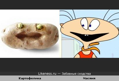 Картофелина похожа на Масяню