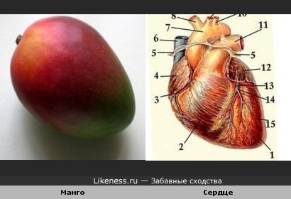 Манго похоже на сердце