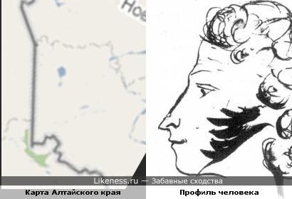 Карта Алтайского края напоминает профиль человека