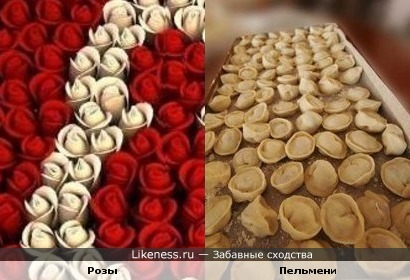 Розы похожи на пельмени