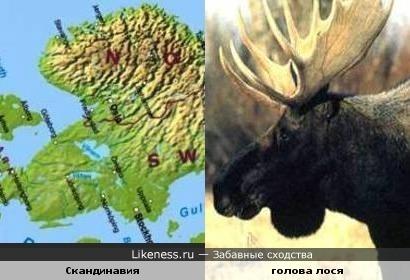 Скандинавия похожа на голову лося