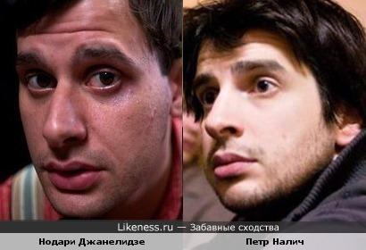 Нодари Джанелидзе похож на Петра Налича