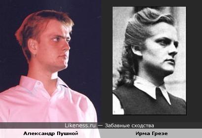 Александр Пушной похож на Ирму Грезе