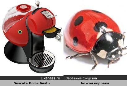 Кофемашина и насекомое