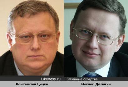 Константин Цицин и Михаил Делягин