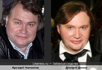 Аркадий Мамонтов и Дмитрий Демин
