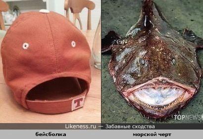 Кепка-рыба