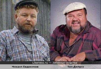 Михаил Евдокимов похож на Тома Делуиза