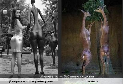 Девушка со скульптурой похожа на газелей