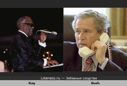 Ray похож на Bush