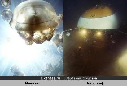 Медуза похожа на Батискаф