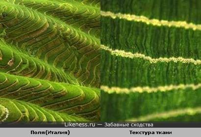 Текстура ткани похожа на поля