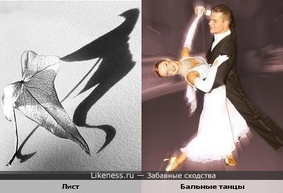 Танцоры похожи на листки