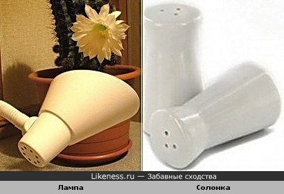 Лампа похожа на солонку