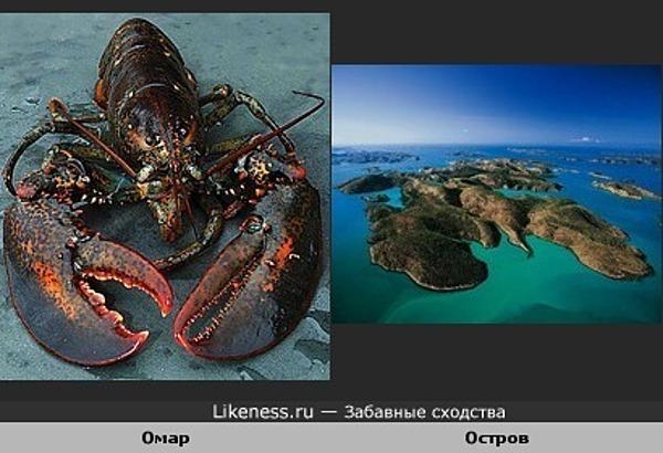 Остров как омар
