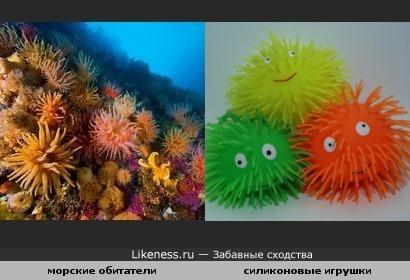 морские обитатели и силиконовые игрушки