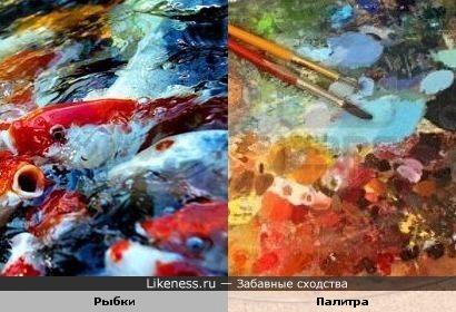 Скопление рыбок и палитра художника