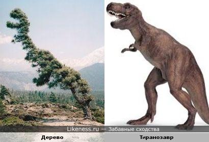 Дерево- тиранозавр