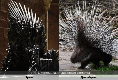 Дикая игра престолов