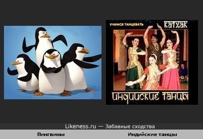 Пингвины танцуют индийские танцы