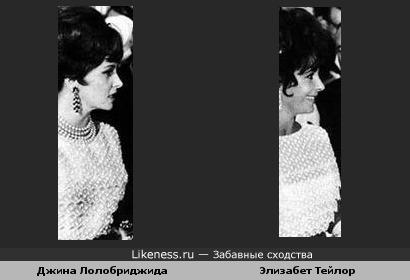Джина Лолобриджида и Элизабет Тейлор