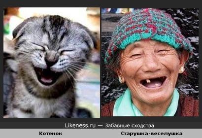 Смеётся тот, кто смеётся последний.