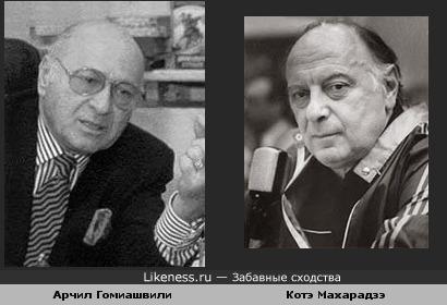 Арчил Гомиашвили похож на Котэ Махарадзэ