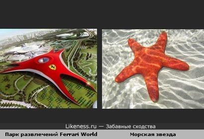 Парк развлечений Ferrari World и морская звезда