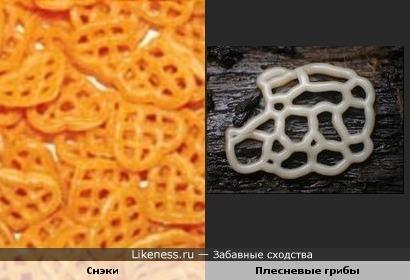 Снэки и плесневые грибы