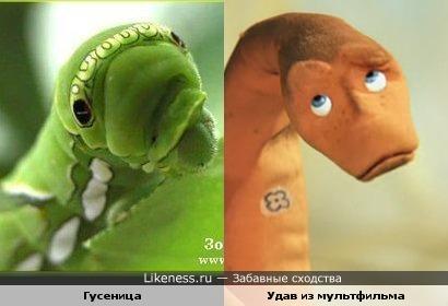 Гусеница и удав из мультфильма