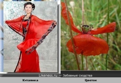 Китаянка и цветок