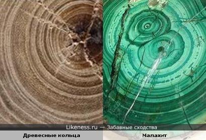 Древесные кольца и малахит