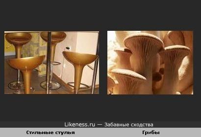 Стильные стулья и грибы