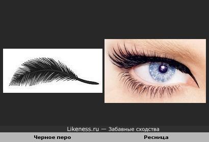 Черное перо и Ресница
