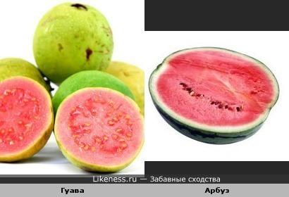 Гуава и Арбуз