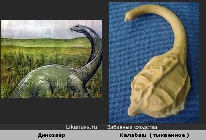 Динозавр и Калабаш ( тыквенное )