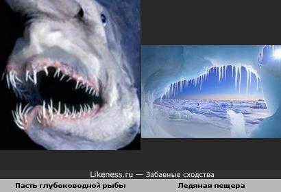 Пасть глубоководной рыбы и Ледяная пещера