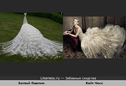 Белый Павлин и Кейт Мосс
