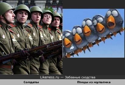 Солдаты и Птицы из мультика