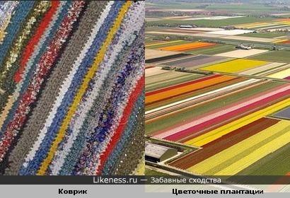 Коврик и Цветочные плантации