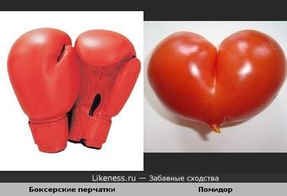 Боксерские перчатки и Помидор