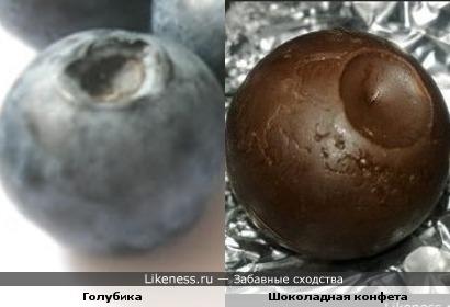 Голубика и Шоколадная конфета