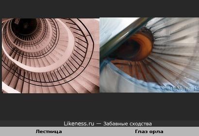 Лестница и Глаз орла